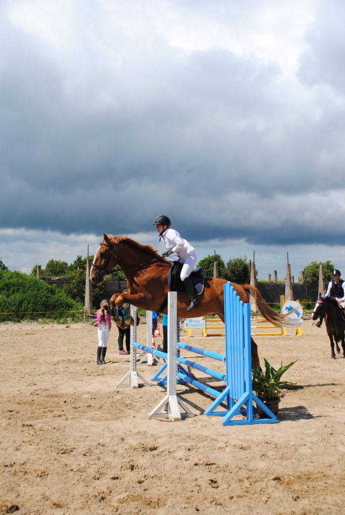 tori horse
